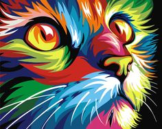 Картина по номерам, раскраска по номерам, paint by numbers, оригинальный подарок - Радужный кот, Ваю Ромдони - Zvetnoe.ru - картины по номерам