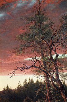Church, Frederic Edwin (1826-1900) - 1860 Twilight in the Wilderness