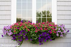 Window Box Tips - my former black thumb - The Lilypad Cottage