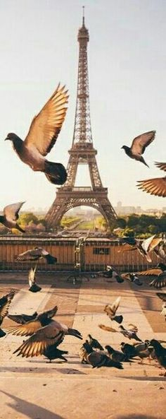 Covet Paris: the marvelous luxury world Tour Eiffel, Torre Eiffel Paris, Paris Eiffel Tower, Scenery Pictures, Background Pictures, Paris In Autumn, Paris Wallpaper, Grand Paris, Triomphe