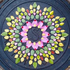 Radial symmetry comes to life, danmala by Kathy Klein.