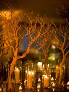 9 Ways to Create Stunning Fall Wedding Centerpieces---tree branches and candles for dinner wedding reception, diy wedding decorations Next Wedding, Tree Wedding, Fall Wedding, Wedding Flowers, Wedding Ideas, Wedding Blog, Woodsy Wedding, Wedding Hair, Diy Wedding