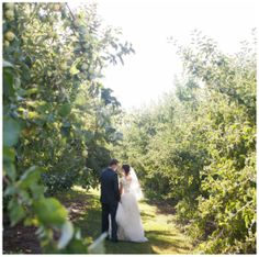 Orchard Wedding Venue