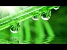 ▶ SPRING RAIN WITH BIRDS | Nature Sounds For Relaxation & Sleep - YouTube