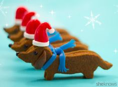 Santa wiener dog gingerbread cookies with edible hats