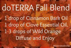 Misting diffuser idea lends a cozy autumn atmosphere, spicy aroma, immune boosting & germ killing benefits! www.mydoterra.com/jaymemiller