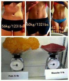 Nous avons spécialement conçu pour les femmes une nutrition pour gagner en masse musculaire. Il va vous permettre de vous tonifier et affiner.