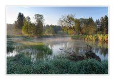 Mrtvý luh in Šumava, Czech Republic by Pavel Ouředník Prado, Magical Forest, Nature Images, Czech Republic, Beautiful Places, Scenery, Environment, Earth, European Countries