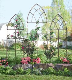 Pipe Fitting Cathedral Style Garden Trellises