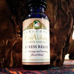 Quickly grounds, centers and stabilizes a person or animal in stressful circumstances.  #floweressences #floralchemy #stress #bach #floweressence   http://www.floracopeia.com/FlorAlchemy-Flower-Essences/
