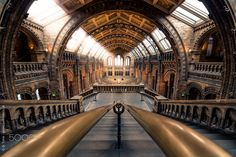 The Natural History Museum of London. Buy My Prints! A view that takes your breath away, a beautiful place that deserves a visit and many photos. I finally had the pleasure of taking this photo. Multiple long exposure (no tripod) to remove the people. London Museums, Long Exposure, History Museum, Natural History, Tripod, Beautiful Places, Prints, People, Photos