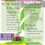 10 Uses for Jojoba Oil: Hair, Face & Body Love This Lightweight Gem!