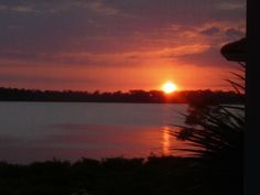 Watching the sunset along the Myakka River in Florida