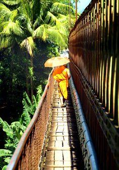 Luang Prabang #travelnewhorizons