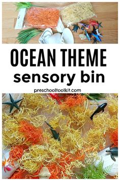 Explore the ocean with preschoolers in a sensory bin filled with curly moss and sea animals. This creative sensory play provides unique fine motor and sensory experiences for early learners. #kidsactivities #kidssensoryplay Sensory Bins, Sensory Play, Ocean Themes, Sea Creatures, Fine Motor, Activities For Kids, Preschool, Curly, Explore