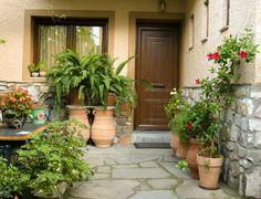 Saiba quais os erros mais comuns em jardinagem e cuide da saúde de suas plantas <-- dicas excelentes!