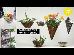 17 Clever City Gardening ideas ⋆ gardeningstrategist.com