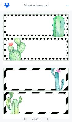 Garden Theme Classroom, Classroom Themes, Classroom Organization, Cactus Names, Paper Background Design, Easy Arts And Crafts, Cactus Decor, Class Decoration, Classroom Inspiration