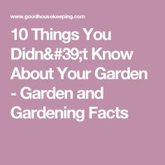10 Things You Didn't Know About Your Garden - Garden and Gardening Facts