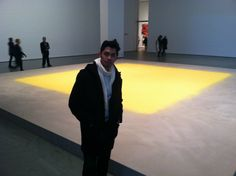 Now at MoMA- the museum of modern art. This was a piece made of actual pollen