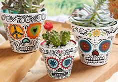 Sugar Skull flower pots