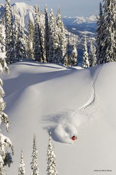 Where I want to be! #Skiing the powder back country in Fernie, BC. #mountains