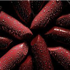 #ruzs #red #beautyful #women #ladies #lipstick #style