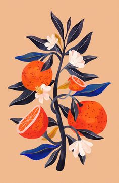Orange Tree – Fine Art Giclee Print // Botanical Print, Orange Print, Gouache Illustration, Twig I Art And Illustration, Gouache Illustrations, Illustration Inspiration, Illustration Design Graphique, Art Graphique, Botanical Illustration, Illustrations Posters, Character Illustration, Animal Illustrations