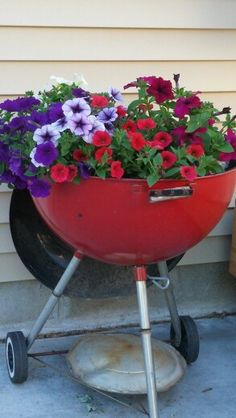 Gardening ideas. I put flowers in an old grill. I get lots of compliments on it.