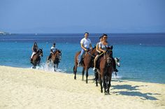 Horse riding along one of Chalkidiki beaches. Ride Along, Most Beautiful Beaches, Horse Riding, Camel, Greece, Horses, Animals, Greece Country, Animales