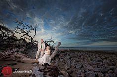 Jekyll island driftwood I love