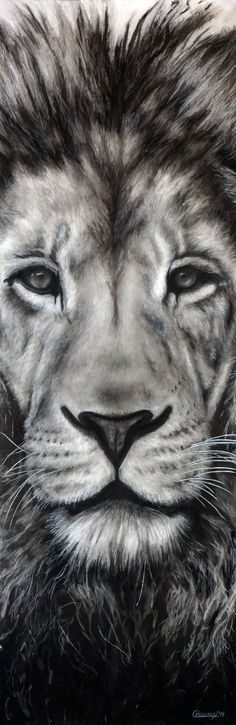 """Guardian"" by Nebraska artist Courtney Kenny Porto. Leo the Lion. Lion Face Drawing, Face Art, Lion Sketch, Charcoal Drawings, Animal Pencil Drawings, Charcoal Art, Animal Sketches, Black And White Art Drawing, Black And White Lion"