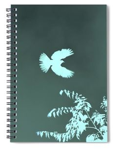 Doves Flight Teal Spiral Notebook Journal by Lesa Fine Dove in flight in reversed silhouette style with teal tint. Photography digitally enhanced used as cover art. Perfect size for those who Journal, document travels, note favorite recipes or make notation of their dreams or tasks. Tons of uses. We have a wide array of cover art to suit your topic. This image also available in indigo and red/white. #spiralnotebook #journal #diary #dove #art #journaling #gifts #giftideas #productsforsale