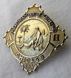 The nursing pin from my School of Nursing!