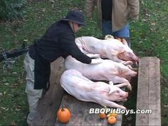 One of the best Videos by the BBQ Pit Boy's. Enjoy a 3 Pig Roast Barbecue by the BBQ Pit Boys