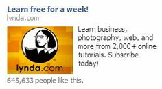 lynda Advertising Campaign, Ads, Online Tutorials, People Like, Banner, Learning, Business, Banner Stands, Banners
