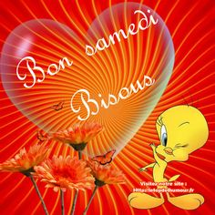 Beautiful Flowers Images, Flower Images, Bon Weekend, Good Saturday, New Week, Betty Boop, Good Morning, Tweety, Lily