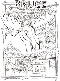 These Free Animal Coloring Pages Of A Moose Are Printable There Many Categories Book Pictures And Sheets For Kids