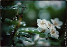 ... ВЕСЕННИЕ ДОЖДИ ... (фотокартина для интерьера) - весна,весеннее настроение