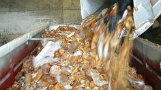 Japan produces approximately 17-23 million tonnes of food annually. Tokyo alone produces 6,000 tonnes of food waste daily (An Appalling Waste of Food, 2013). Photo source: Taste the Waste, n.d.