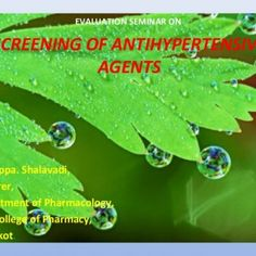 EVALUATION SEMINAR ON SCREENING OF ANTIHYPERTENSIVE AGENTS By Mallappa. Shalavadi, Lecturer, Department of Pharmacology, HSK College of Pharmacy, Bagalkot.. http://slidehot.com/resources/screening-of-anti-hypertensives2003.43989/