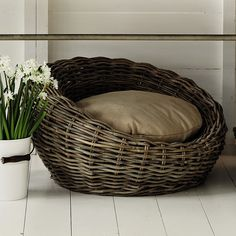 For our pooch. Kubu dog basket. Beautiful texture.