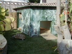 Great plan for a tortoise shelter