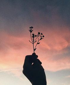 33 Trendy Ideas For Flowers Photography Pictures Roses Aesthetic Backgrounds, Aesthetic Iphone Wallpaper, Aesthetic Wallpapers, Sky Aesthetic, Flower Aesthetic, Aesthetic Anime, Hand Photography, Creative Photography, Photography Flowers