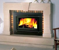10 Best Fire Place Inserts Images Fireplace Ideas Wood