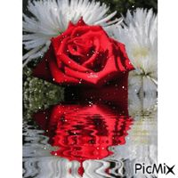 Rose Roses, Animation, Disney Princess, Disney Characters, Pink, Rose, Anime, Disney Princes, Disney Princesses