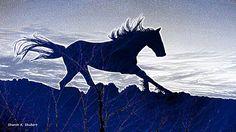 Running Horse Art Blue Gray Photomontage by GrayWolfGallery