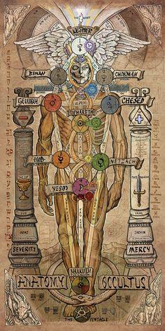 Anatomy witchcraft Sephiroth pentagram pentacle occult mercy tree of life occultism kabbalah Qabalah thelema Occultus severity Kether the occultus Magick, Witchcraft, Chakra Symbole, Masonic Art, Masonic Symbols, Les Chakras, Esoteric Art, Arte Obscura, Occult Art