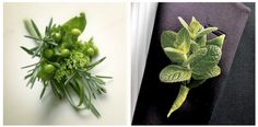 Herbal mint rosemary boutonniere