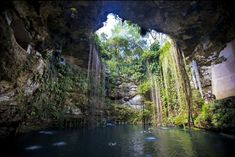 """Cenote Ik Kil"", the Sacred Blue Cenote, in Mexico's Yucatan Peninsula- not too far away from Cancun!"